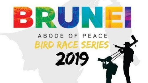 Brunei Bird Race Series Calling to All Nature and Bird Lovers